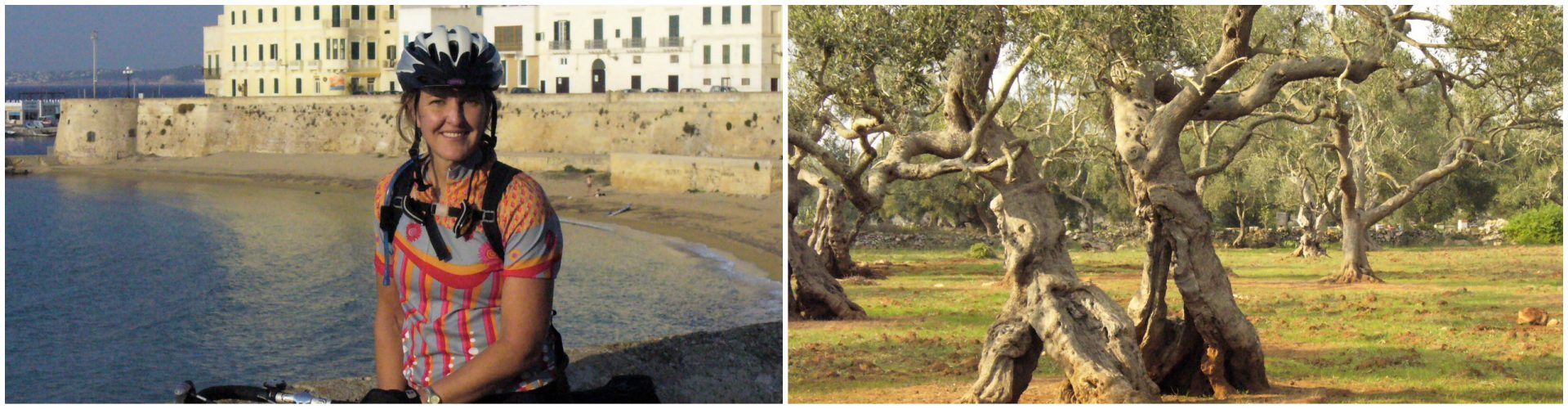 Cycling Puglia - Olive Trees and the Coast