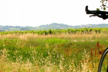 Self-Guided cycling in Emilia Romagna, Italy